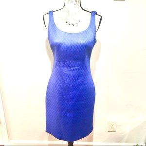 Tahari Sleeveless Sheath Dress